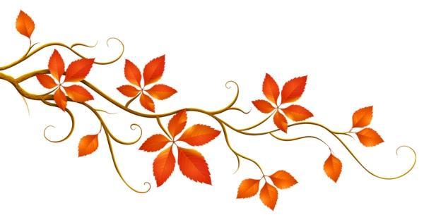 decorative_branch_with_autumn_leaves_png_clipart.png